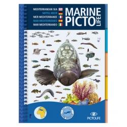 image: Marine pictolife Mediterranee